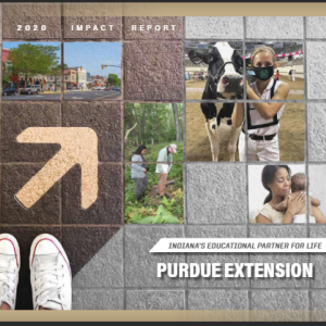 Extension Impact Report