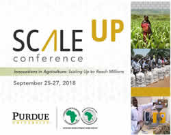 ScaleUp graphic