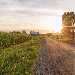 Indiana field