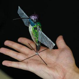 hummingbird inspired robot