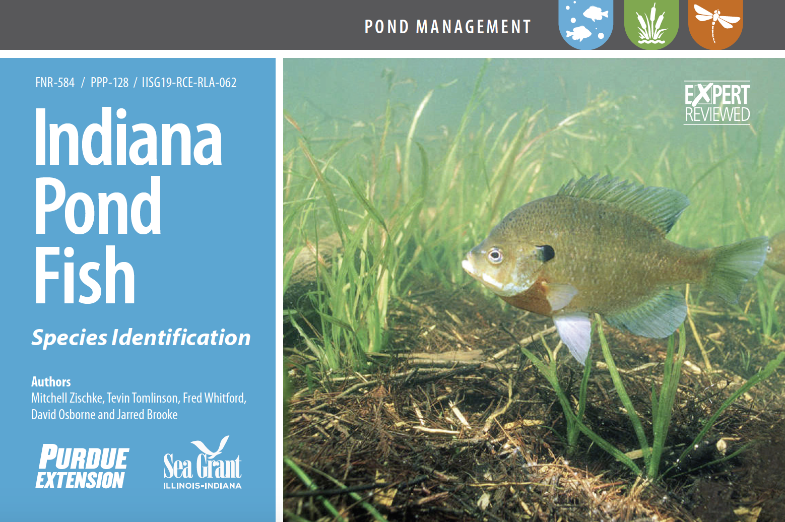 Indiana Pond Fish publication cover